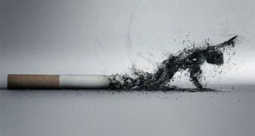 سیگار و مرگ انسان
